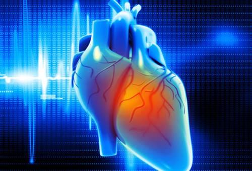 cardiologia cosa studia