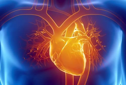 visita cardiochirurgica in cosa consiste